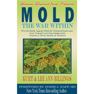 Mold: The War Within (paperback)